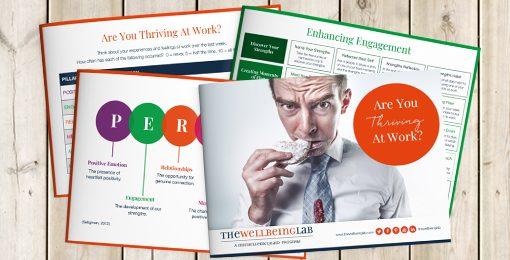 PERMAH Workplace Wellbeing Workshop